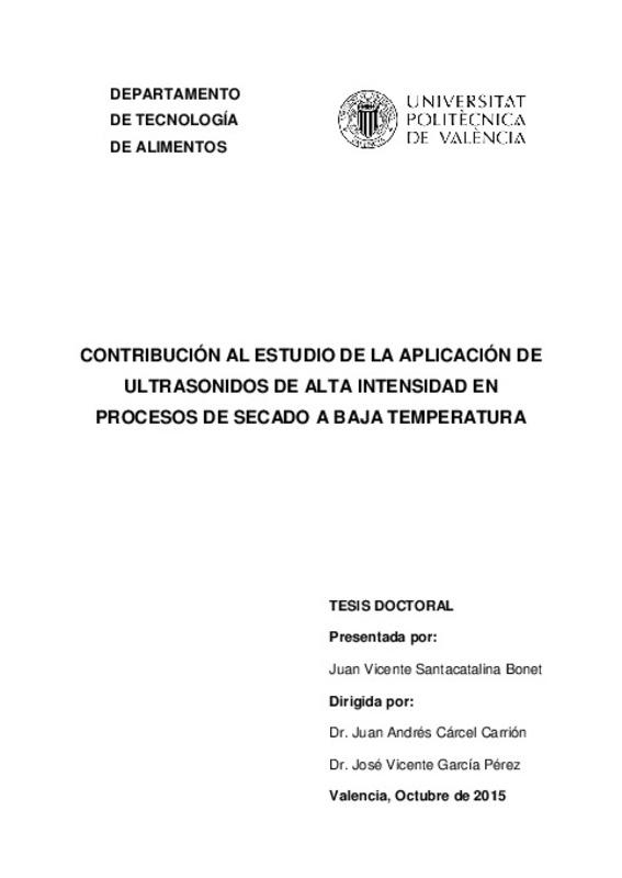 Contribucion Al Estudio De La Aplicacion De Ultrasonidos De Alta Intensidad En Procesos De Secado A Baja Temperatura